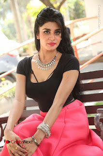 Telugu Actress Harini Stills at Dhyavudaa Movie Teaser Launch  0313.JPG