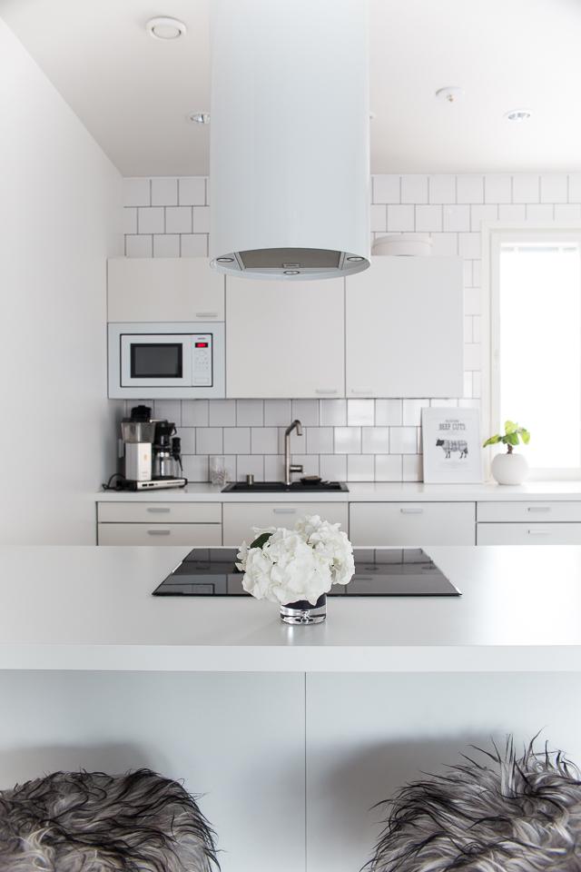 keittiö, taljat, Villa H, keittiön sisustus, mustavalkoinen koti