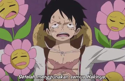 One Piece Episode 802 Subtitle Indonesia