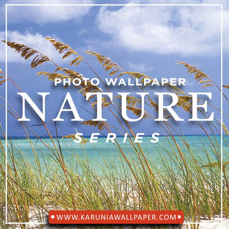 jual photowall peamdangan alam