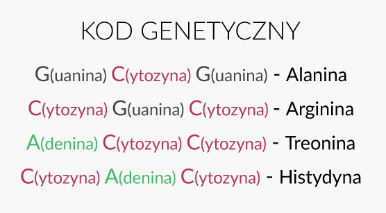 Kod genetyczny DNA