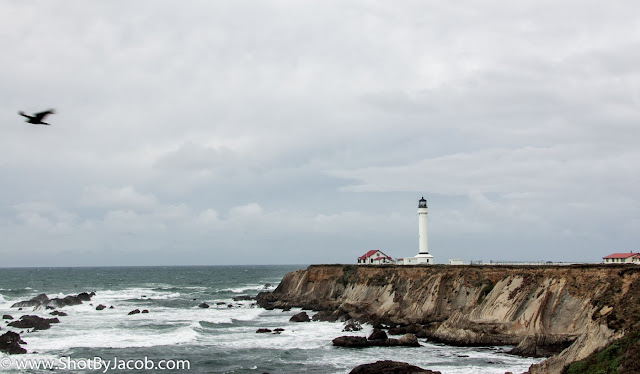 A picture I shot at the Point Arenas Lighthouse of the coastline