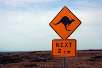Strassenschild: Känguruhs next 2 km