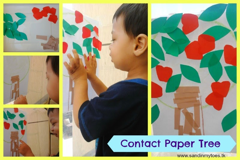 Contact paper apple tree