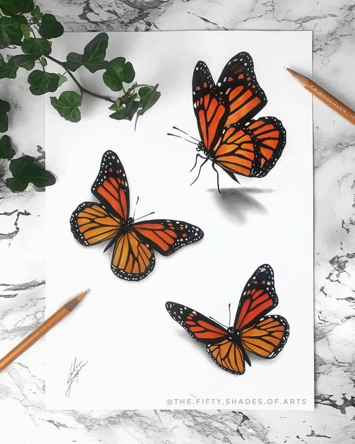 06-Orange-Butterflies-Solene-Pasquier-www-designstack-co