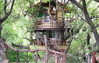 Tertarikah Kalian Menginap Rumah Pohon Mengagumkan Ini?
