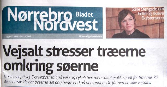 https://www.norrebronordvestbladet.dk/vejsalt-stresser-soeens-traeer/