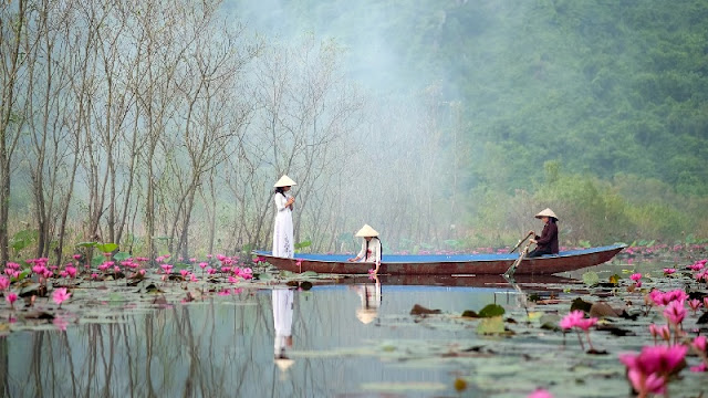 Immersed in The Charming Beauty of The Yen Stream in The Lilies 3