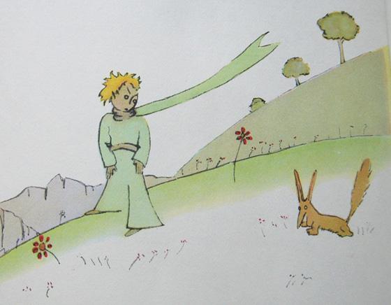 zorro-principito