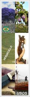 usos-madera-exotica-verdecillo-maderas-vallarta-ventas-maderables-cuale