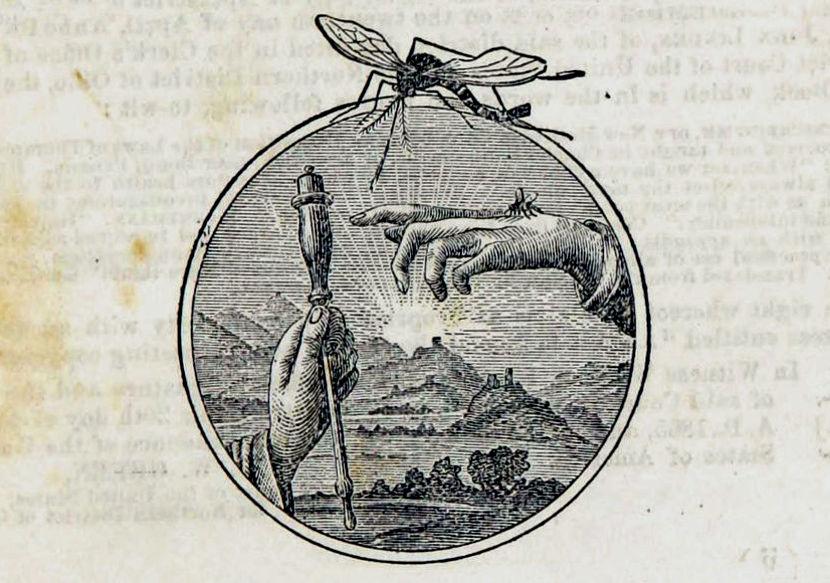 Marca del «Mosquito» de Baunscheidt