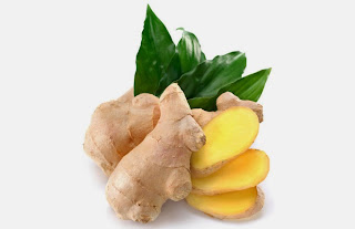 Manfaat dan khasiat Tumbuhan Jahe untuk Kesehatan