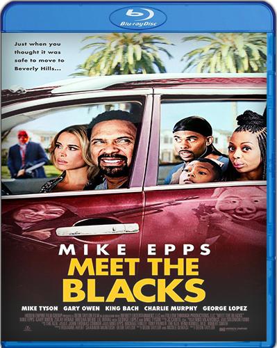Meet the Blacks [BD25] [2016] [Subtitulado]