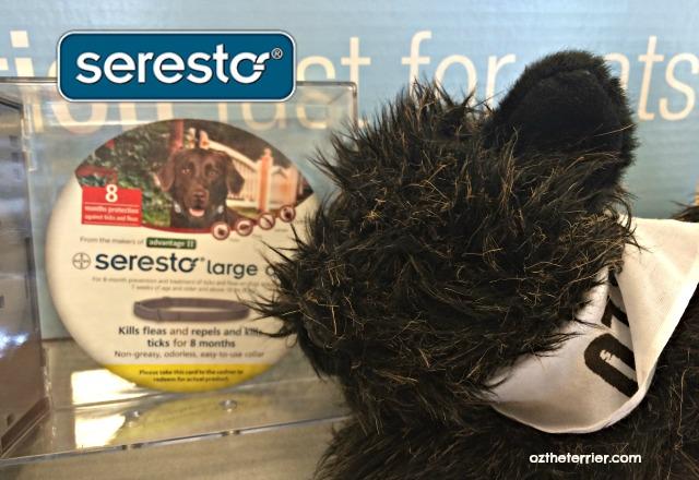 Seresto collar provides 8 months flea control