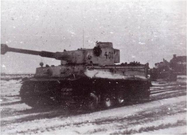 Tiger «401»
