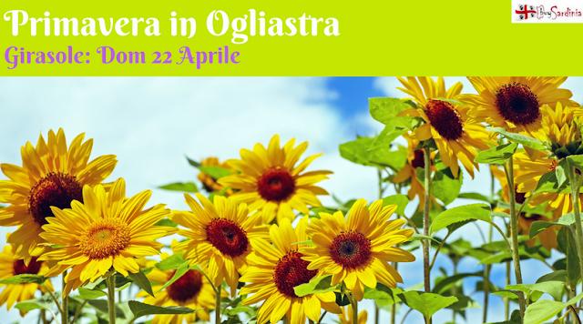 Primavera in Ogliastra con buySardinia dom 22 aprile