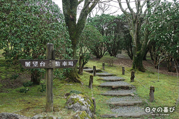 sentier du parc onshihakone  avec petit escalier et vegetation