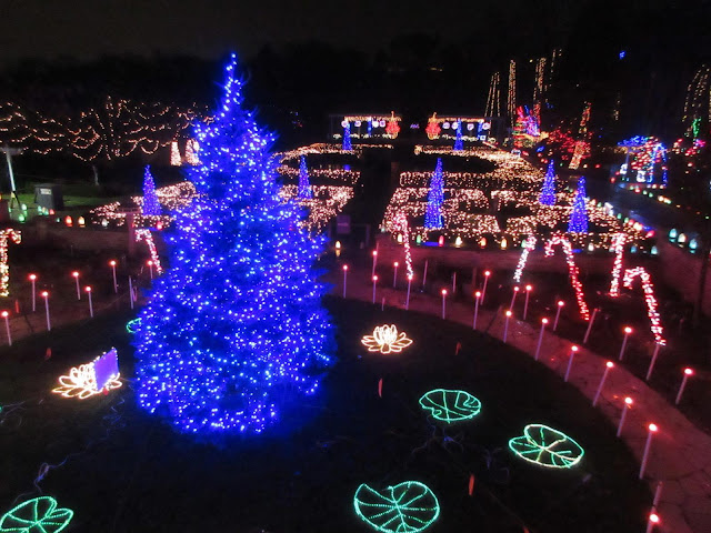 Gardens full of lights at the Holiday Light Show at the Rotary Botanical Gardens. Image credit Mark Dwyer.