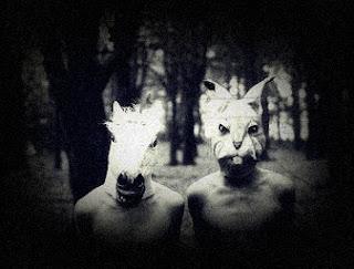 Coelhos e Cavalos