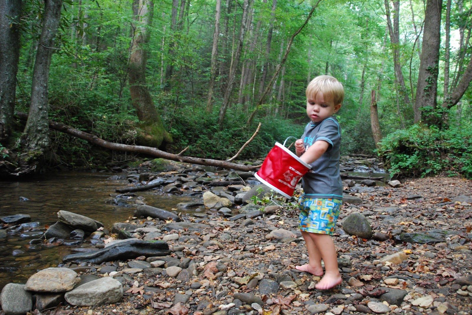 camp single parents When i first became a single parent, nearly five and half years ago, i felt  first  overnight, and then multi-night car camping trips gradually filled.