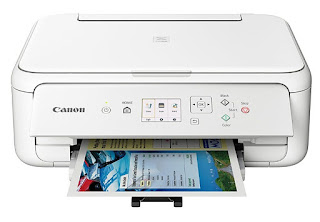 inwards trend solid unit of measurement printer removes all the bother from making wonderful borderless pictures  Canon PIXMA TS5151 Drivers Download