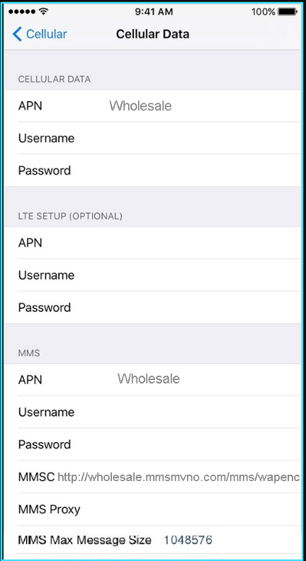 New Mint SIM apn settings iPhone