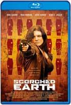 Scorched Earth (2017) HD 720p Subtitulada