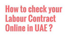 UAE Labour Law: What are your legal working hours?