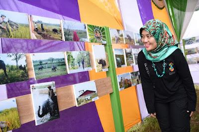 Way Kambas Forest Photography Festival, Berwisata Sambil Jepret Gajah