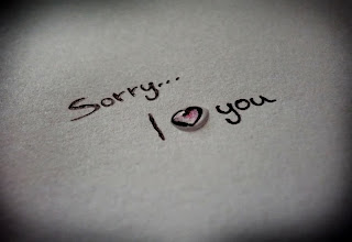 sorry i love you
