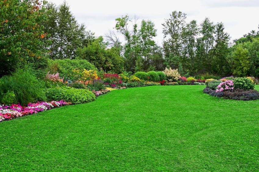 Una Pagina En Blanco El Jardinero Y Su Jardin