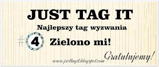http://justtagit.blogspot.com/2015/03/wyniki-4-wyzwania-tagowego-zielono-mi.html