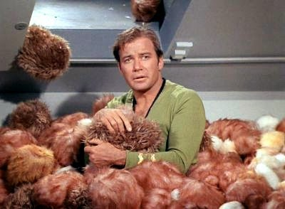 James T Kirk - Star Trek Original Series - The Trouble With Tribbles