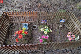 Кладбище домашних животных. Игрушки для пекинесов