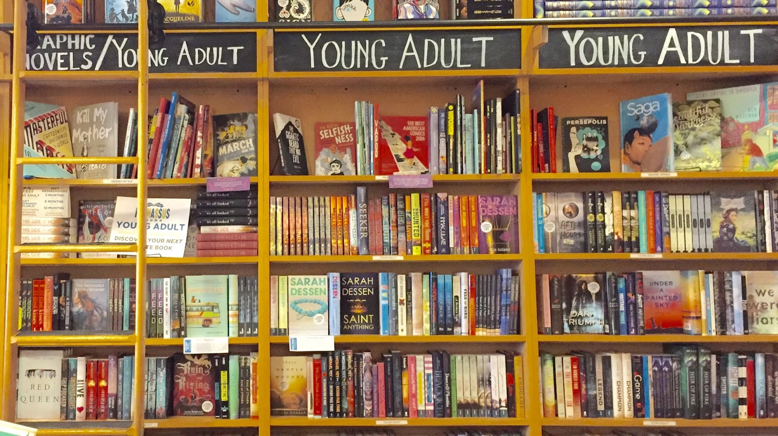 about young adult literature