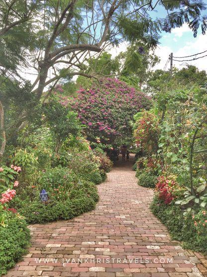 Pathway at Sonya's Garden