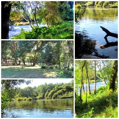 Imagenes del Rio Ulla