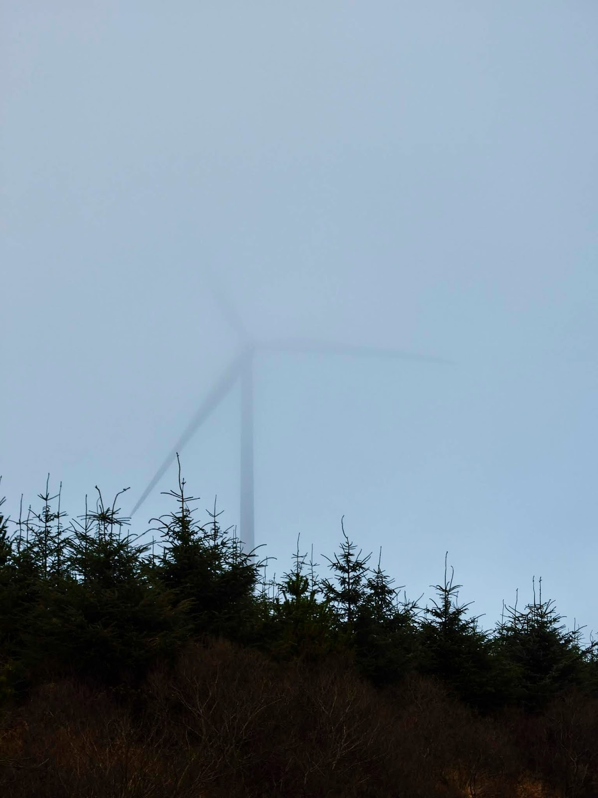 Top of the windmill hidden in the fog over conifer trees.