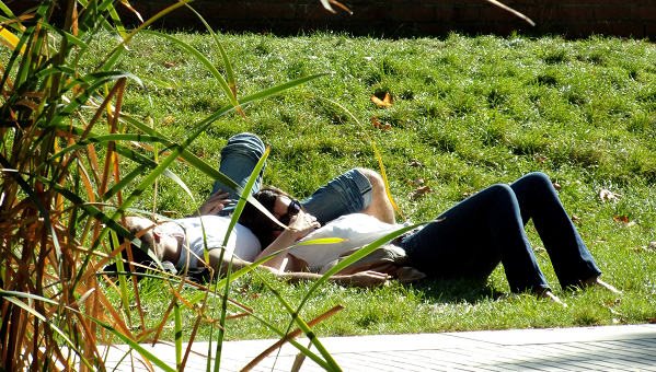 couple allongé sur l'herbe