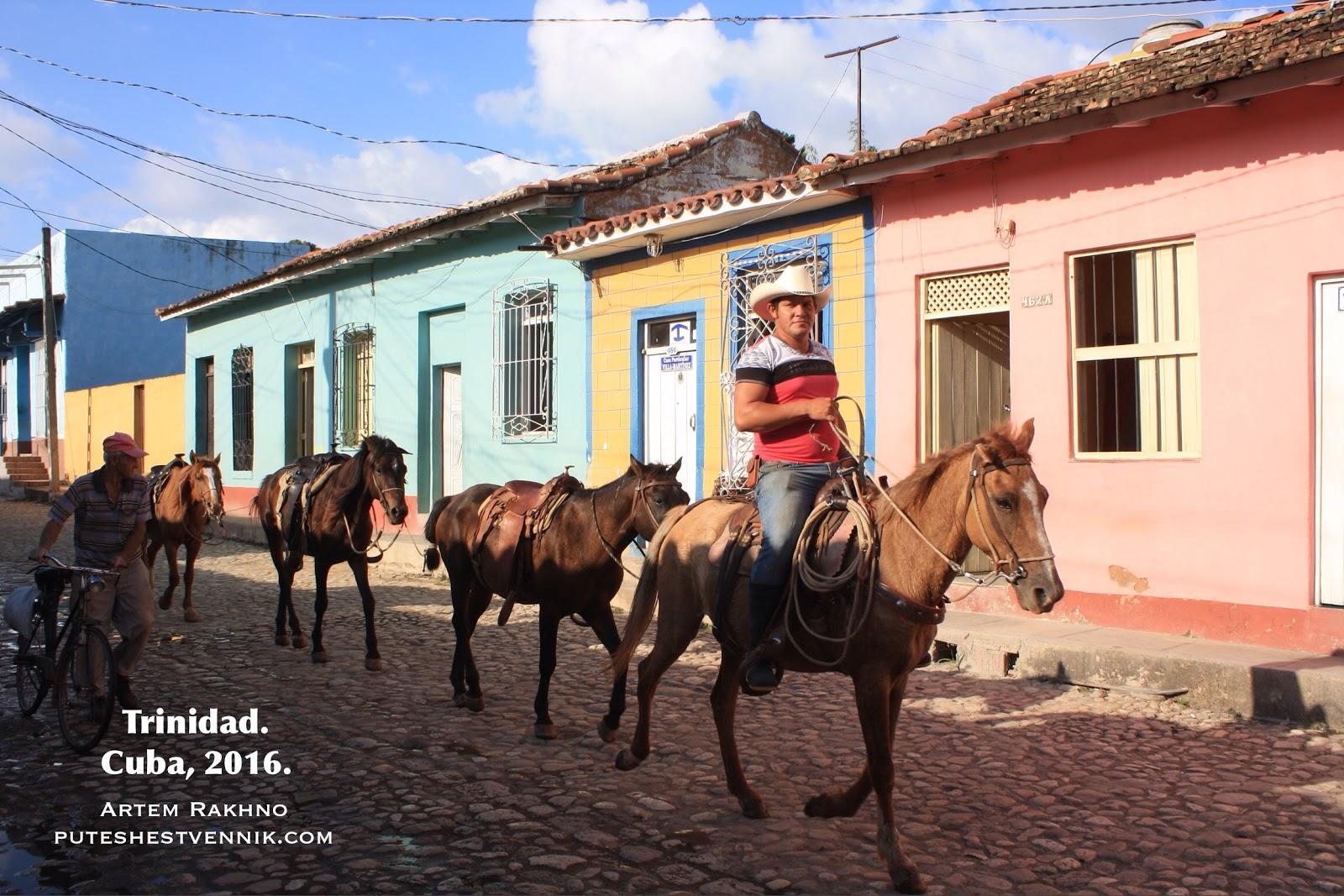 Ковбой и его лошади на Кубе