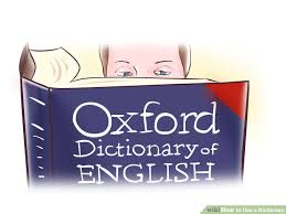 The Important of Using a Dictionary