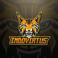 Indovirtus Logo