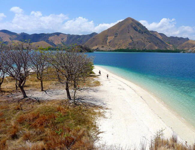 Xvlor Kelor Island is perfect place for camping and snorkeling in Labuan Bajo