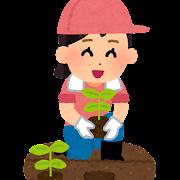 苗を植える女の子のイラスト