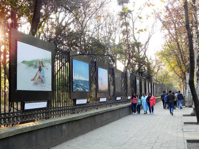 galeria abierta de Bosque de Chapultepec