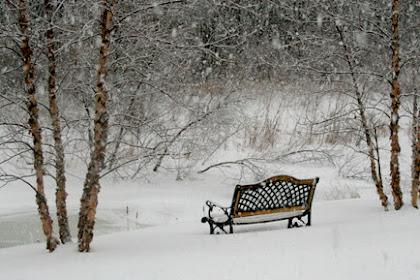470+ Gambar Pemandangan Indah Salju Terbaik