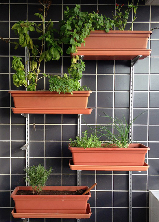 horta na cozinha,  horta vertical, jardim vertical, faça você mesmo, diy, do it yourself, decor, decoração, home design, a casa eh sua