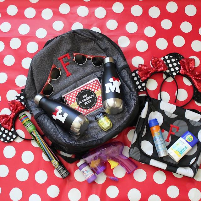 Disney Park Bag- Souveneirs