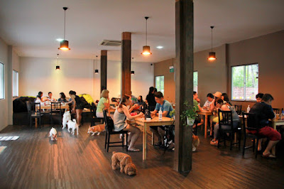 Dog friendly cafes in singapore