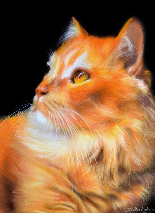 11-Pumpkin-Danguole-Serstinskaja-Paintings-of-Cats-that-look-like-Photographs